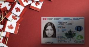 返加卡   如何入境加拿大?   多咨处