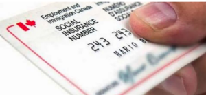 什么是免税储蓄账户TFSA?